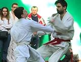 Чемпионат Владимирской области по всестилевому каратэ - 2018