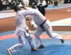 Чемпионат Мира по всестилевому каратэ 2019
