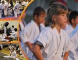 Положение о IV открытых Всероссийских юношеских Играх боевых искусств - 2011